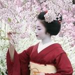 Japanese Drops: Kimono