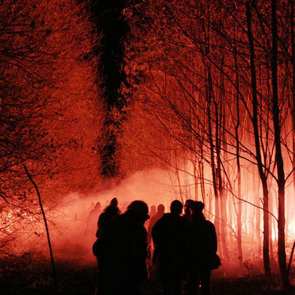 Florentijn Hofman - wood - bosco - red - rosso - light - luce