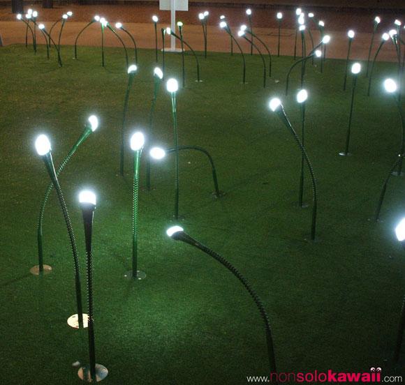 Led - Fiori di luce nella brezza della notte… / Flowers of light in the night breeze… - Lorenza Golinelli, Selena Mascia, Marco Morotti, Alberto Ricci Petitoni, Andrea Tampieri