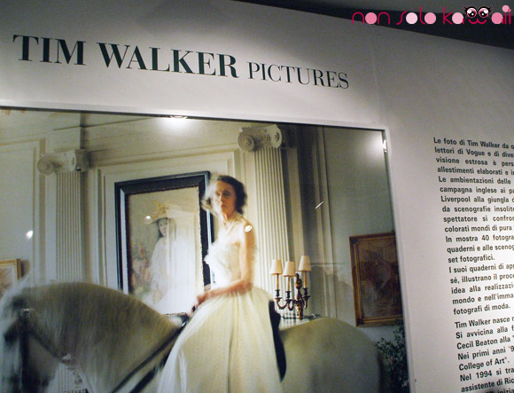 Tim Walker -  Pictures, Galleria Carla Sozzani