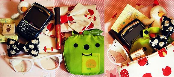 Fabiana's bag / La borsa di Fabiana