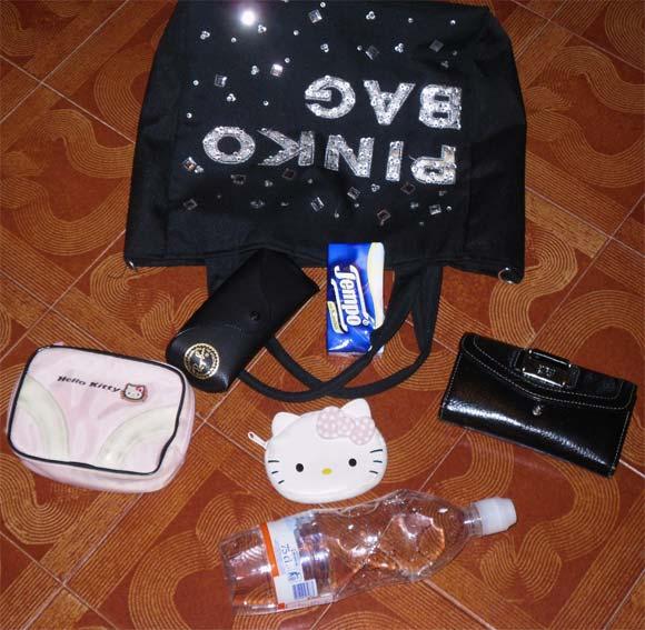Rosanna's bag / La borsa di Rosanna
