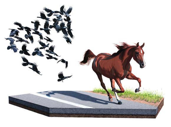 Josh Keyes - Shadow, 2010