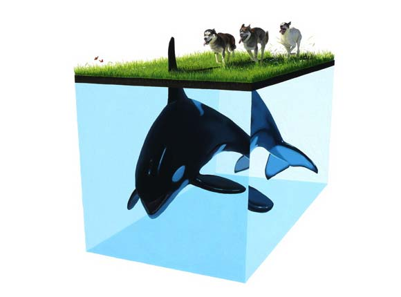 Josh Keyes - Thunder, 2008