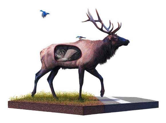 Josh Keyes - Incubate, 2009
