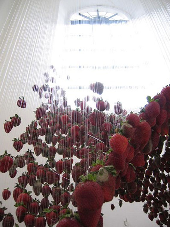 © Claire Morgan - All that is solid..., strawberries, fragole, 2004