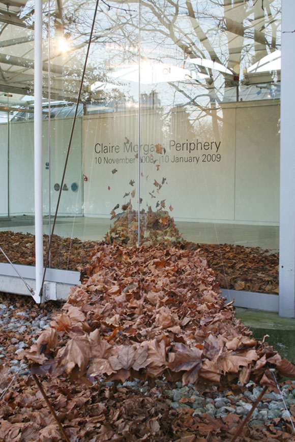 © Claire Morgan - Landing Strip, dry leaves, foglie secche, 2008