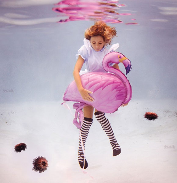 Elena Kalis - Alice in WaterLand - Alice in WonderWater - Alice's Flamingo
