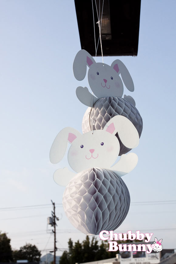 Chubby Bunny - Bunnies & festoni con conigli