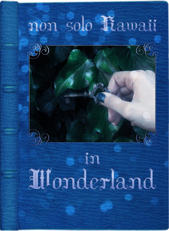 non solo Kawaii in Wonderland - Cover