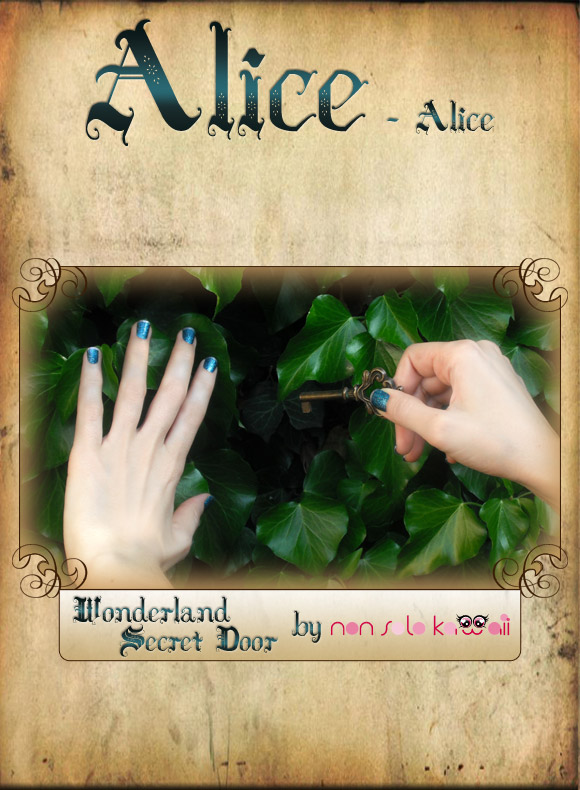 non solo Kawaii in Wonderland - Alice : Wonderland Secret Door