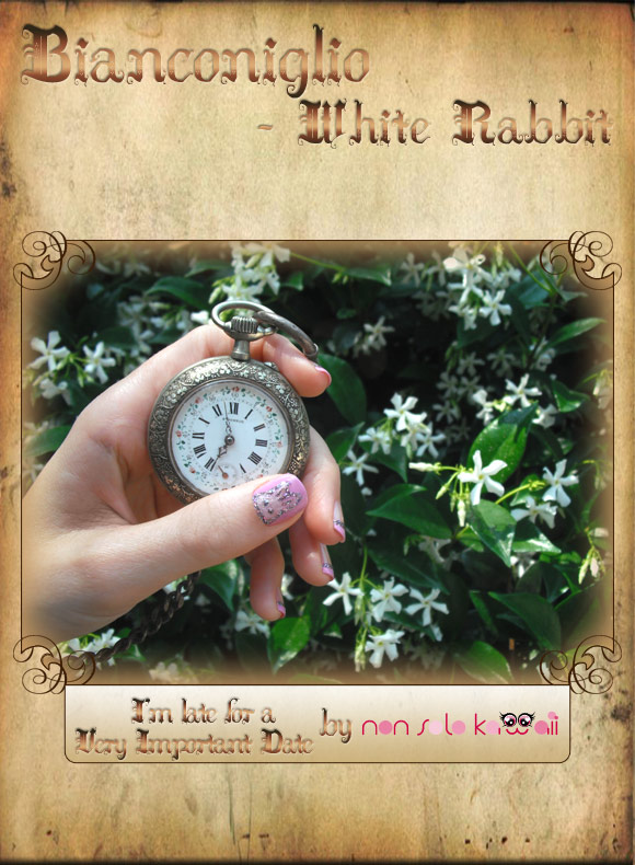 non solo Kawaii in Wonderland - Bianconiglio / White Rabbit: I'm Late for a Very Important Date