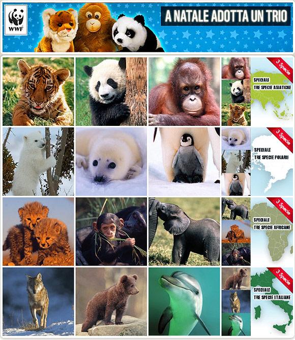 WWF adotta un animale