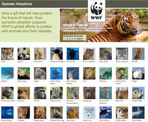 WWF adopt a wild animal