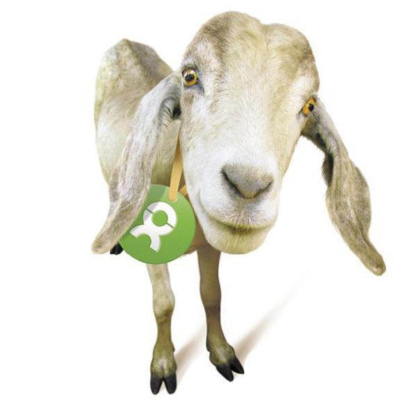 Gli Spacchettati by Oxfam, capra capretta carina