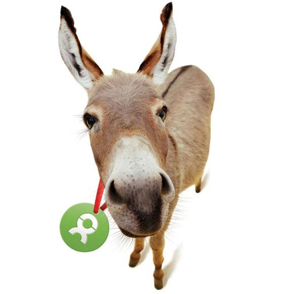 Gli Spacchettati by Oxfam, asino asinello donkey