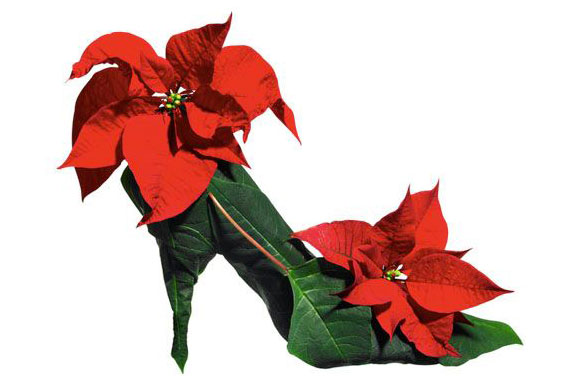 Stine Heilmann, Christmas Flower Shoe