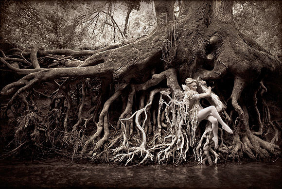 Kirsty Mitchell - 7......... - acrobata nelle radici di un grande albero - acrobat on the roots of a big tree
