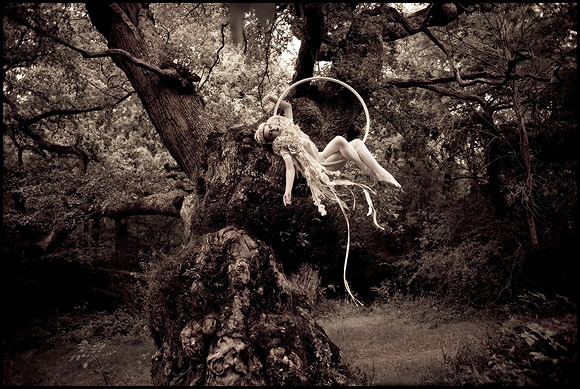 Kirsty Mitchell - 10..... part 2 - acrobata tra i rami di un grande albero - acrobat on the branches of a big tree