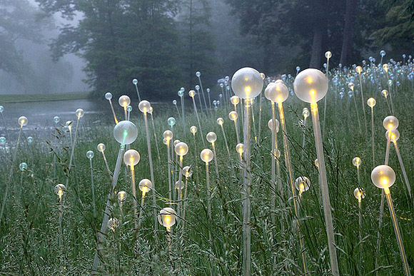 Bruce Munro - Forest of Light, Longwood Gardens