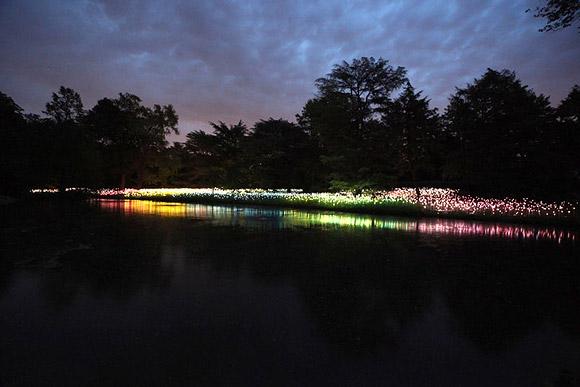 Bruce Munro - Forest of Light, Longwood Gardens