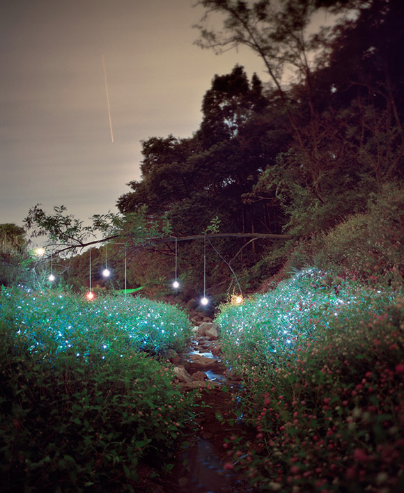 Lee Eunyeol, light design in the nature, giochi di luce nella natura