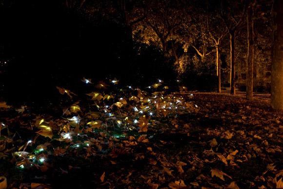 Fuga de hojas en parque urbano, Luz Interruptus, Madrid, fuga di foglie nel paesaggio urbano, Leaves excape in urban landscape