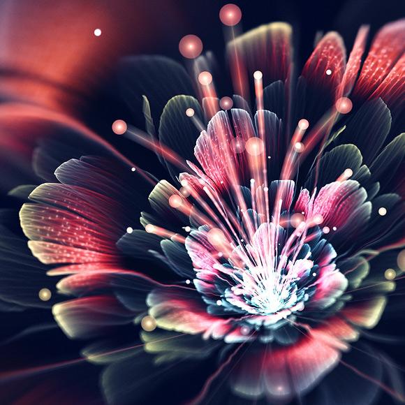 Chiara Biancheri - 3D Fractal Flowers, Subtle Glory
