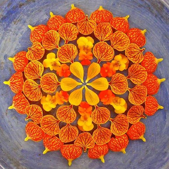 Kathy Klein - Danmala Flower Mandala