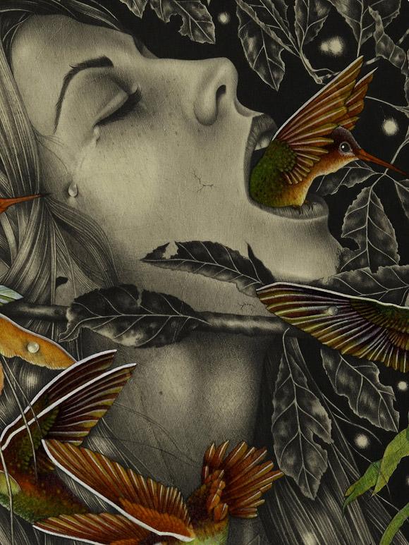 Alessia Iannetti, Violiceps - Lacrima Aquarium Show