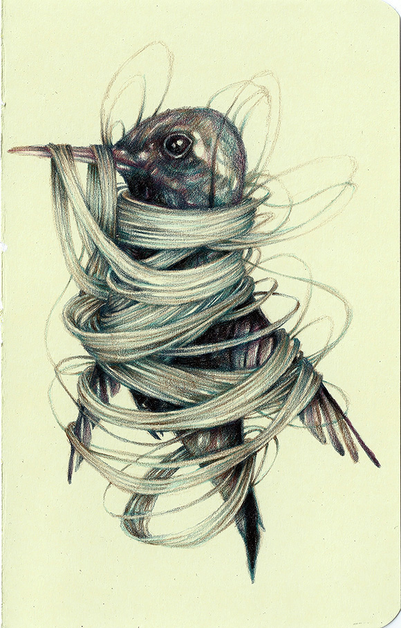 The Dandy, Marco Mazzoni | Tiny Trifecta, Cotton Candy Machine