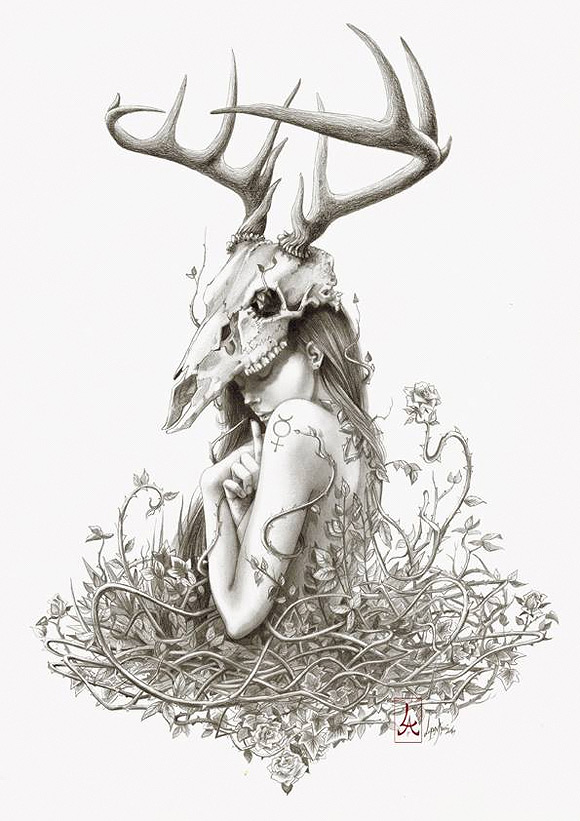Lorena Assisi - The deer secret
