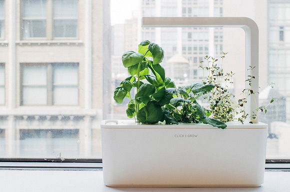 Click & Grows Smart Herb Garden
